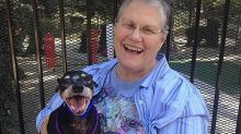 The heartwarming story of how this widow took home the oldest, 'least adoptable' dog in the shelter