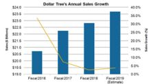 Dollar Tree's Strategic Plans: Better Results in Fiscal 2019?