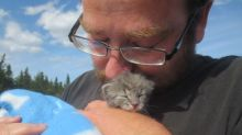 Cat rescuer says animal protection laws need tougher enforcement