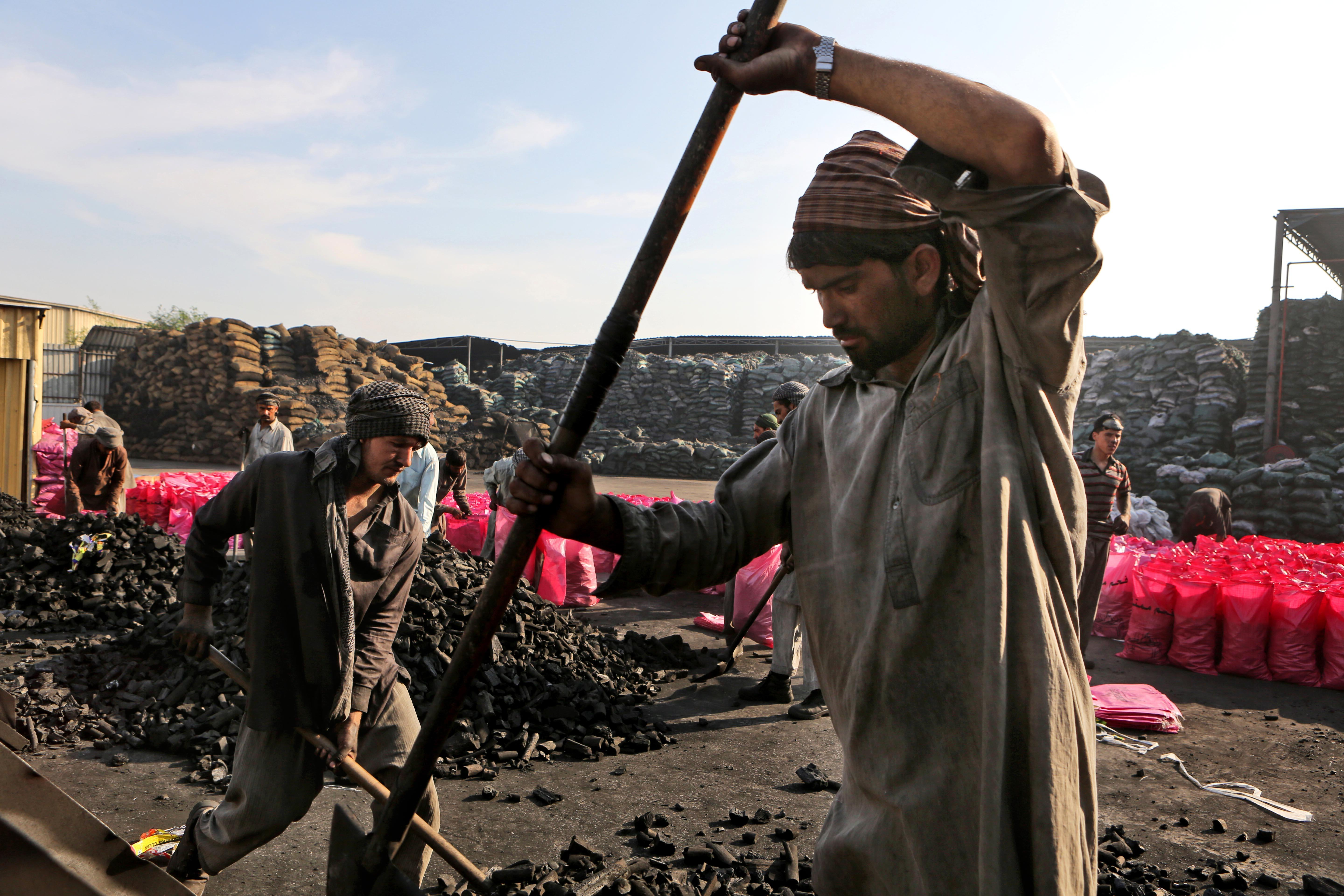 Banned Somali charcoal still finds ways into Gulf