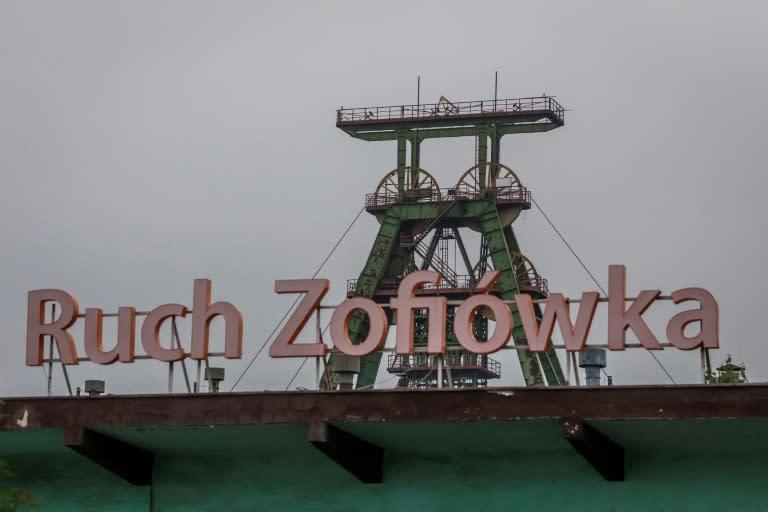 Poland became Europe's biggest coal generator after Germany (AFP Photo/Wojtek RADWANSKI)