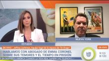 Lawyer of wife of 'El Chapo' called Univision journalist an 'idiot' on live television