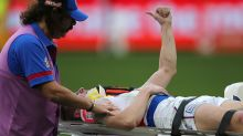 Bulldog in hospital after sickening collision against Eagles