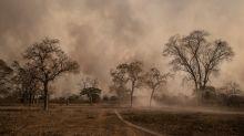 Especialista alertam para efeitos da fumaça do Pantanal no Rio e SP