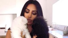 Kim Kardashian Asks Fans for Help Deciding a Name for Her 2 New Pomeranian Puppies: 'Saké or Soba?'
