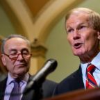 'Stop lying' about Florida recounts, Democrats warn Trump