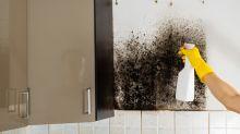 Tutto quello che devi sapere sull'umidità in casa e come combatterla!