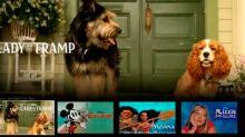 Primera imagen de los perritos protagonistas de la nueva versión de La dama y el vagabundo