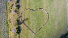 Wedding guests form perfect heart around couple in drone photo