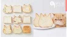 【貓奴最佳早餐選擇】日本超人氣麵包店專售超可愛貓貓吐司,2月中旬名古屋再開分店!