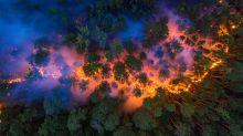 Waldbrände in Sibirien: Feuer, wo Eis sein sollte