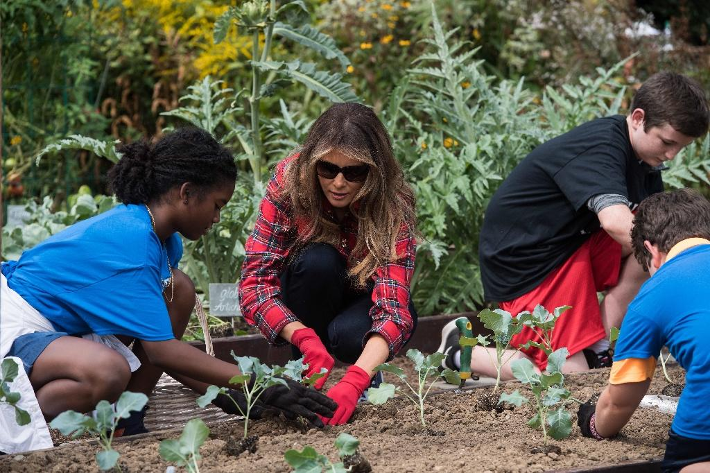 Melania Trump Harvests Michelle Obama 39 S Vegetable Garden
