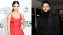 Selena Gomez Supports The Weeknd at Amsterdam Concert