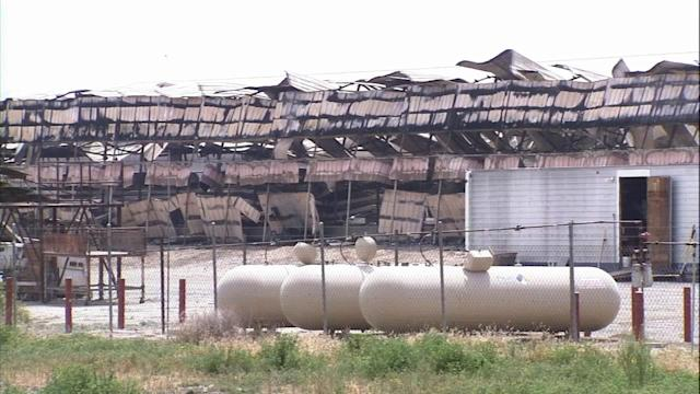 Thousands of chickens die in San Jacinto fire