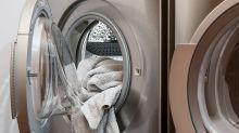 Saiba qual erro comum ao lavar a roupa pode causar infestação de insetos