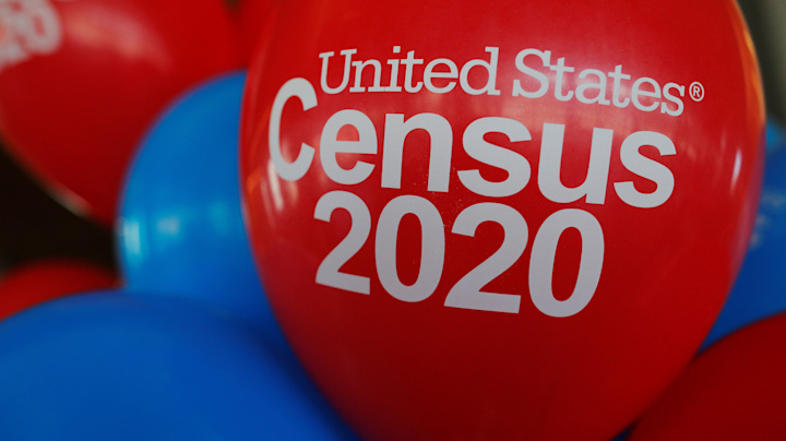 First-ever digital census raises hacking concerns