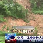 Landslide in China's Hubei buries nine