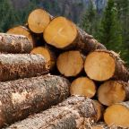 Can You Imagine How Acadian Timber's (TSE:ADN) Shareholders Feel About The 60% Share Price Increase?