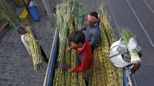 India's Oct 1-Nov 30 sugar output 3.97 million tonnes