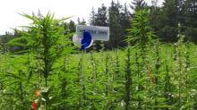 Marijuana Company of America Provides Update on Its Hemp CBD Joint Venture Project with Global Hemp Group in Canada