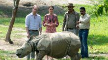 Prince William praises fight against 'abhorrent' illegal wildlife trade in rare video message