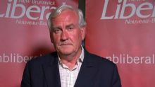 Kevin Vickers steps aside as Liberal leader