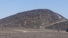 Huge cat found etched into desert among Nazca Lines in Peru