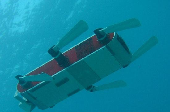 AQUA2 amphibious robot is super cute and fast, less annoying than most pets because it has no head