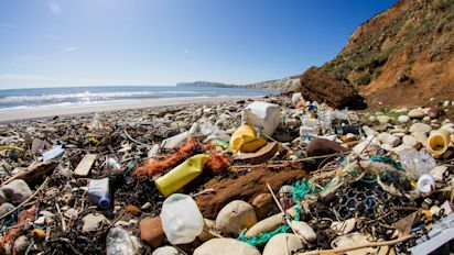 Overwhelming Public Support For Using Taxes To Fight Plastic Waste