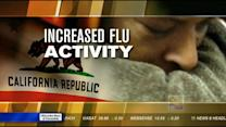 Flu activity is now widespread in California