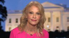 Kellyanne Conway: The Democratic Party has no confidence in Joe Biden's competence