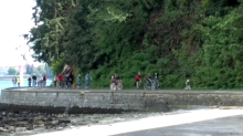 What a traffic jam looks like along Vancouver's seawall
