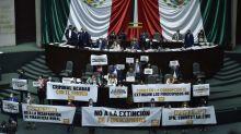 Por falta de quórum, se aplaza en Diputados votación sobre extinción de fideicomisos