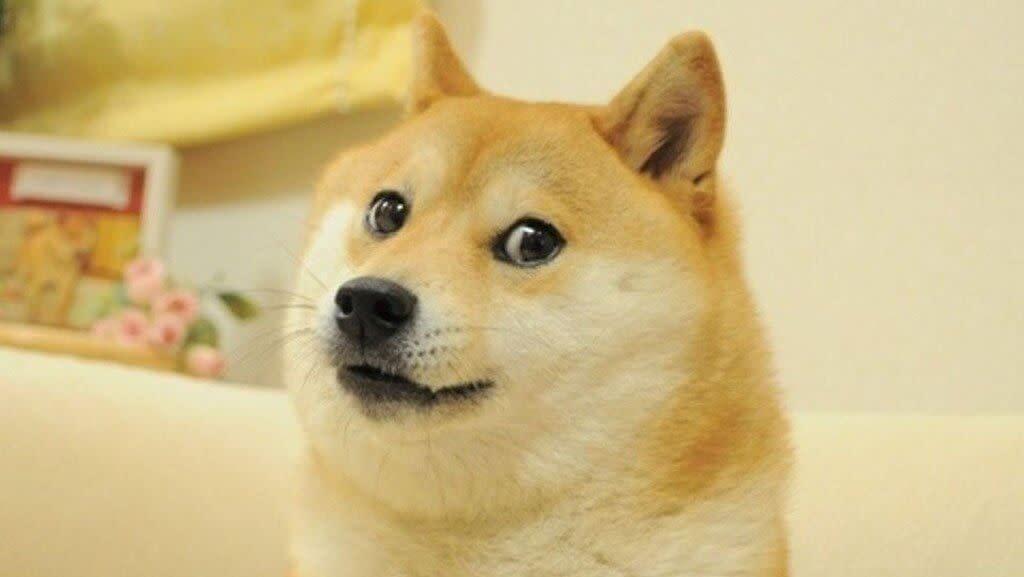 Dogecoin now listed on Huobi.com and HBG.com