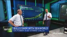 Bulls swim with Seaworld. Plus, the big bet on a mining n...