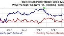 Weyerhaeuser's (WY) Growth Strategies Solid: Time to Buy?