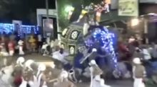 Elephant injures 18 after going on rampage during religious festival in Sri Lanka