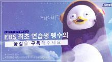 韓國人氣企鵝PENGSOO個人頻道訂閱數突破200萬
