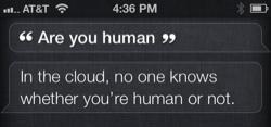 iOS 6: Talking to Siri and having fun