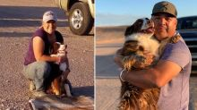 Family reunites with dog who ran away nine months ago