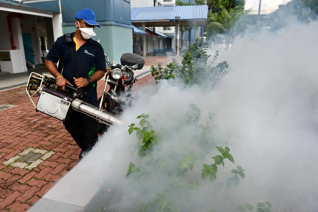 A pest control worker fumigates the grounds of a residential estate in the Bedok North area of Singapore on September 1, 2016 (AFP Photo/Roslan Rahman)