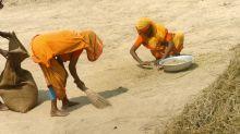 Bangladesh arrests cleric over fatwa against women farming
