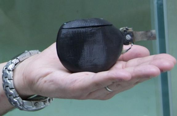 Robot fish demonstrates leadership, could lead real aquatic life to safety (video)