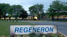 Odds Are Against Regeneron, Sanofi In Amgen Patent Battle: Leerink