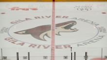 Coyotes address bullying revelations about 2020 draft pick