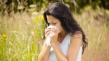 Pourquoi l'allergie au pollen touche-t-elle plus de monde qu'il y a 50 ans ?