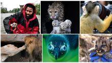 Amazing animal photos captured in 2018
