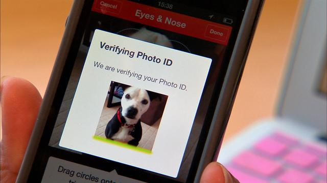Finding your lost dog is now a snap(shot)