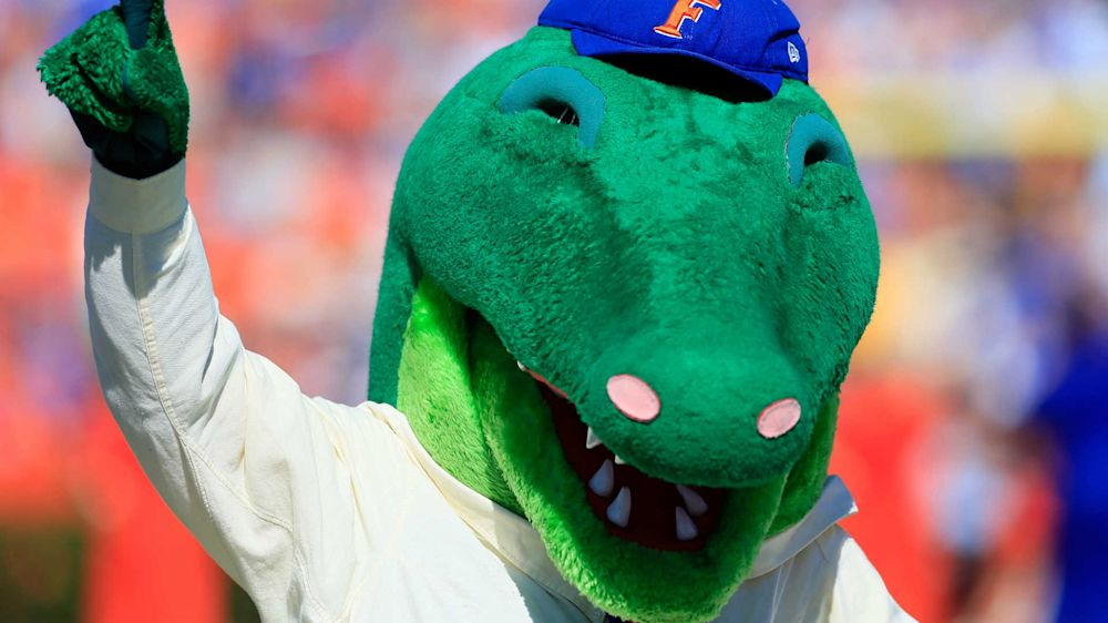 Gators mascot saves kid from foul ball to head