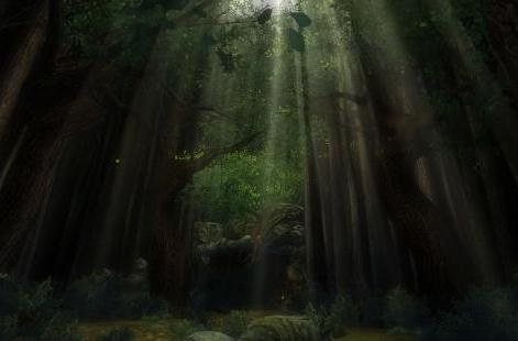 The Daily Grind: What's your favorite MMO forest?